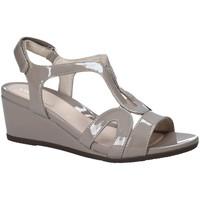 Čevlji  Ženske Sandali & Odprti čevlji Stonefly 110241 Rjav