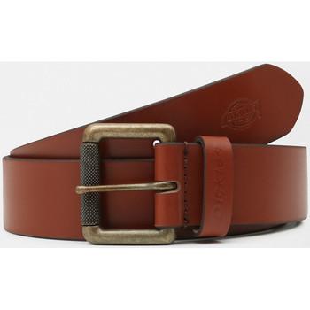 Tekstilni dodatki Moški Pasovi Dickies South shore leather belt Kostanjeva