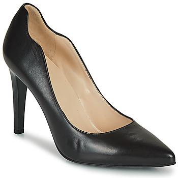 Čevlji  Ženske Salonarji NeroGiardini BASTI Črna