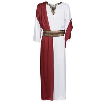 Oblačila Moški Kostumi Fun Costumes COSTUME ADULTE JULIUS Večbarvna