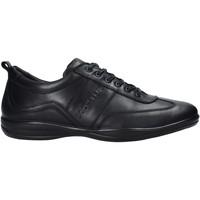 Čevlji  Moški Modne superge Docksteps DSM105001 Črna