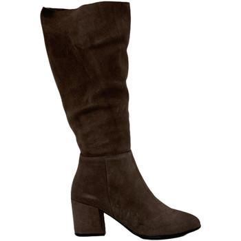 Čevlji  Ženske Polškornji Bueno Shoes 20WR5104 Rjav
