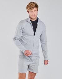 Oblačila Moški Puloverji Yurban OMANS Siva