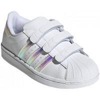 Čevlji  Otroci Nizke superge adidas Originals Superstar cf c Bela