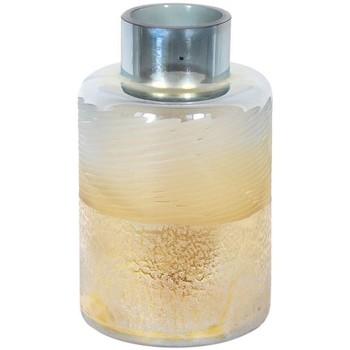 Dom Vaze, notranji okrasni lonci Signes Grimalt Kristalna Vaza Gris