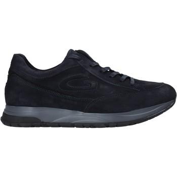 Čevlji  Moški Nizke superge Alberto Guardiani AGM004800 Modra