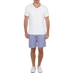 Oblačila Moški Kratke hlače & Bermuda Franklin & Marshall GAWLER Modra / Bež