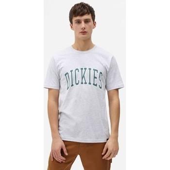 Oblačila Moški Majice s kratkimi rokavi Dickies T-shirt  Aitkin gris chiné/vert