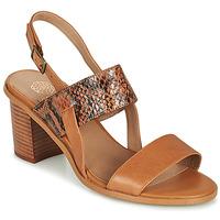 Čevlji  Ženske Sandali & Odprti čevlji Karston LIMEY Kamel