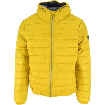 Oblačila Moški Puhovke Lotto Bomber Cortina Hd Lg Pad Pl Rumena