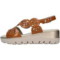 Čevlji  Ženske Sandali & Odprti čevlji CallagHan 26510 BROWN