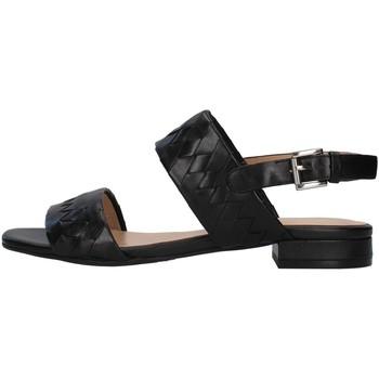 Čevlji  Ženske Sandali & Odprti čevlji Apepazza S1PETIT18/VEG BLACK