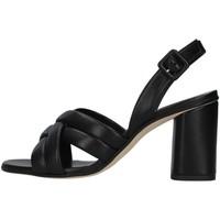 Čevlji  Ženske Sandali & Odprti čevlji Tres Jolie 2069/ELDA BLACK