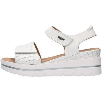 Čevlji  Ženske Sandali & Odprti čevlji Melluso 036012 WHITE