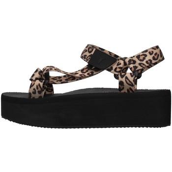 Čevlji  Ženske Sandali & Odprti čevlji Windsor Smith POPPED BROWN