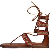 Čevlji  Ženske Sandali & Odprti čevlji Zoe INCAS05 BROWN