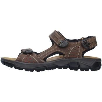 Čevlji  Moški Športni sandali IgI&CO 7130022 BEIGE