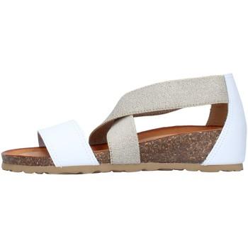 Čevlji  Ženske Sandali & Odprti čevlji IgI&CO 7185055 WHITE
