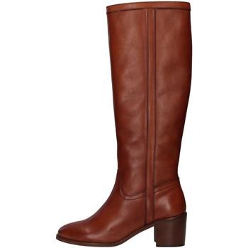 Čevlji  Ženske Mestni škornji    Paola Ferri D7285 BROWN