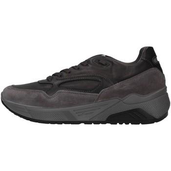 Čevlji  Moški Nizke superge IgI&CO 6142422 GREY