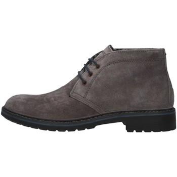 Čevlji  Moški Polškornji IgI&CO 6108622 GREY