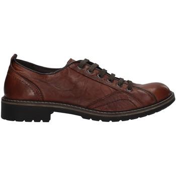 Čevlji  Moški Čevlji Derby IgI&CO 6108311 BROWN