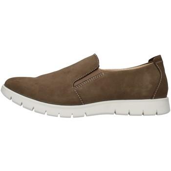 Čevlji  Moški Slips on IgI&CO 5115322 BROWN