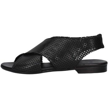Čevlji  Ženske Sandali & Odprti čevlji Zoe DAFFY064 BLACK