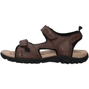 Čevlji  Moški Sandali & Odprti čevlji Geox U4224A000ME BROWN