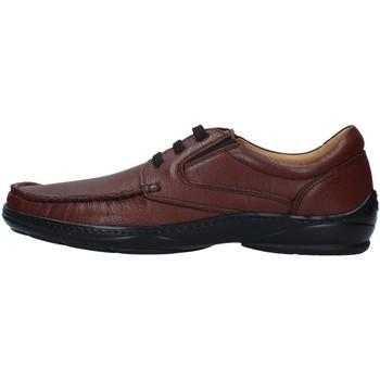 Čevlji  Moški Čevlji Derby Melluso U47038A BROWN