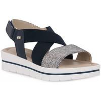 Čevlji  Ženske Sandali & Odprti čevlji Valleverde BLU SANDALO Blu