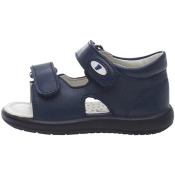 Čevlji  Otroci Sandali & Odprti čevlji Falcotto 1500728 01 Modra