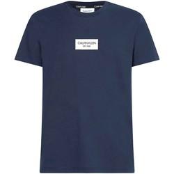 Oblačila Moški Majice s kratkimi rokavi Calvin Klein Jeans K10K106484 Modra