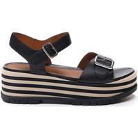 Čevlji  Ženske Sandali & Odprti čevlji Stonefly 213920 Črna