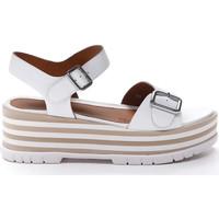 Čevlji  Ženske Sandali & Odprti čevlji Stonefly 213920 Biely