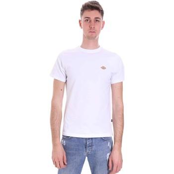 Oblačila Moški Majice s kratkimi rokavi Dickies DK0A4XDAWHX1 Biely