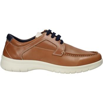 Čevlji  Moški Modne superge Melluso XU17128 Rjav