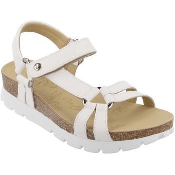 Čevlji  Ženske Sandali & Odprti čevlji Panama Jack  Blanco