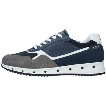 Čevlji  Moški Nizke superge IgI&CO 7121100 NAVY BLUE