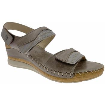 Čevlji  Ženske Sandali & Odprti čevlji Riposella RIP11244marr marrone