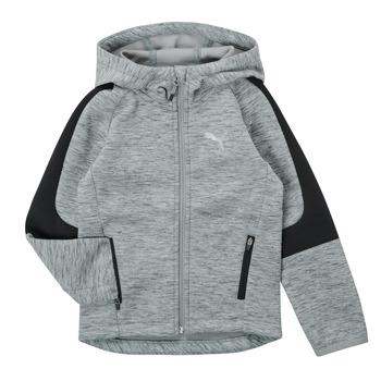 Oblačila Dečki Puloverji Puma EVOSTRIPE FZ HOODED JACKET Siva