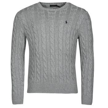 Oblačila Moški Puloverji Polo Ralph Lauren SERINA Siva