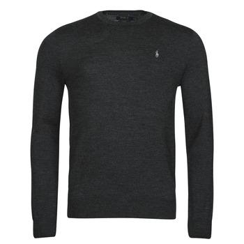 Oblačila Moški Puloverji Polo Ralph Lauren AMIRAL Siva