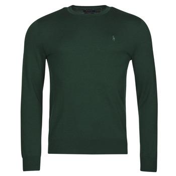 Oblačila Moški Puloverji Polo Ralph Lauren AMIRAL Zelena