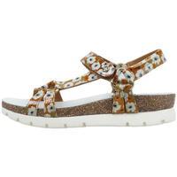Čevlji  Ženske Sandali & Odprti čevlji Panama Jack  Bež