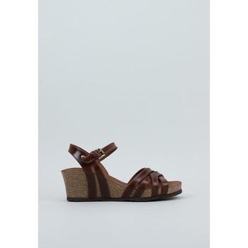 Čevlji  Ženske Sandali & Odprti čevlji Panama Jack  Kostanjeva