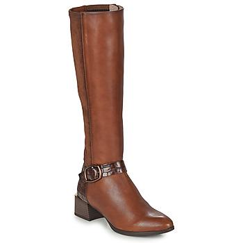 Čevlji  Ženske Mestni škornji    Hispanitas ALPES Kostanjeva