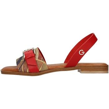 Čevlji  Ženske Sandali & Odprti čevlji Gattinoni PEGAF6171WH WHITE