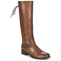 Čevlji  Ženske Mestni škornji    Gabor 7160624 Kostanjeva