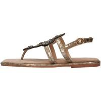 Čevlji  Ženske Sandali & Odprti čevlji Alma Blue V21BL9013 BRONZE